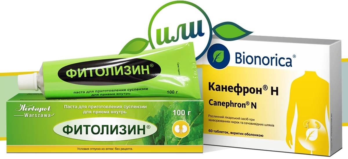 Фитолизин при лечении цистита: состав, как принимать, противопоказания